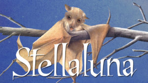 """Bats: Fly By Night""- South Beloit Library StoryClub Program with Severson Dells @ Nature At The Confluence Campus 