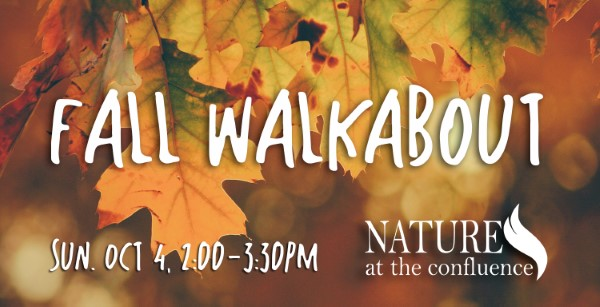 Fall Walkabout – Guided Walk with 815 Outside @ Nature At The Confluence Campus