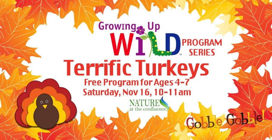"""Terrific Turkeys"" Growing Up Wild™ Program  – Ages 4-7 @ Nature At The Confluence Campus"