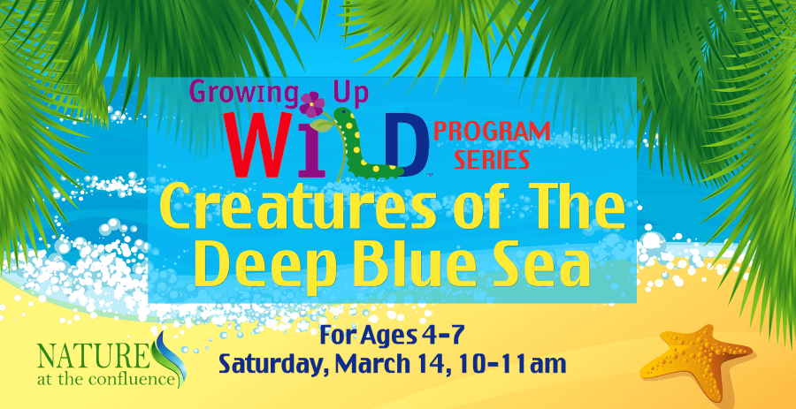 """Creatures of The Deep Blue Sea"" Growing Up Wild™ Program  – Ages 4-7 @ Nature At The Confluence Campus"