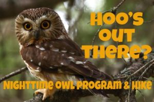 Hoo's Out There? A Nighttime Owl Program & Hike by Sand Bluff Bird Observatory @ Nature At The Confluence Campus | South Beloit | Illinois | United States