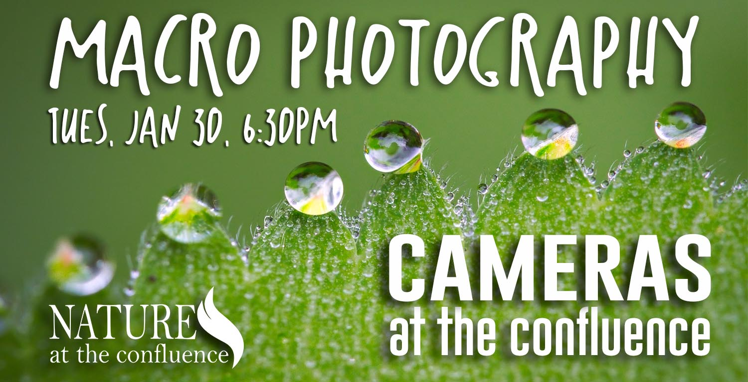 Cameras At The Confluence: Macro Photography @ Nature At The Confluence Campus