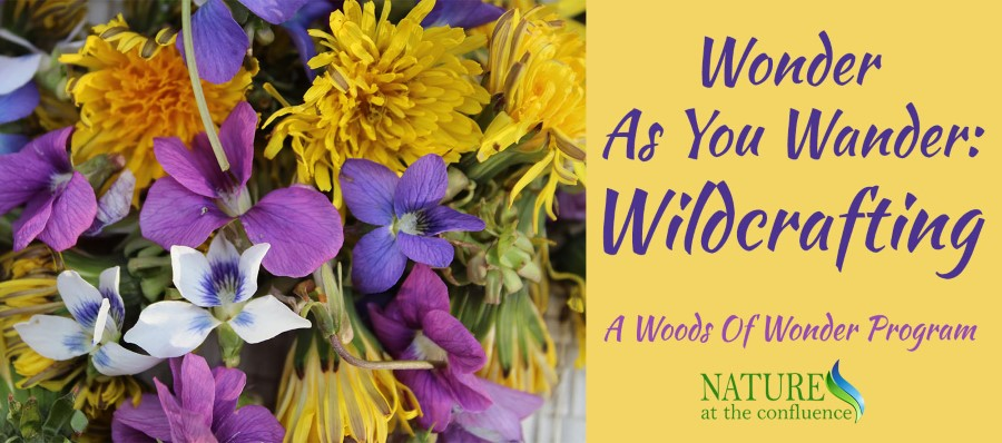 Wonder As You Wander : Wildcrafting @ Nature At The Confluence Campus
