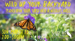 Wild Up Your Backyard – How To Transform Your Yard Into a Wildlife Oasis @ Nature At The Confluence Campus | South Beloit | Illinois | United States