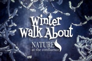 CANCELLED! Winter Walkabout – part of Beloit Winterfest @ Nature At The Confluence Campus