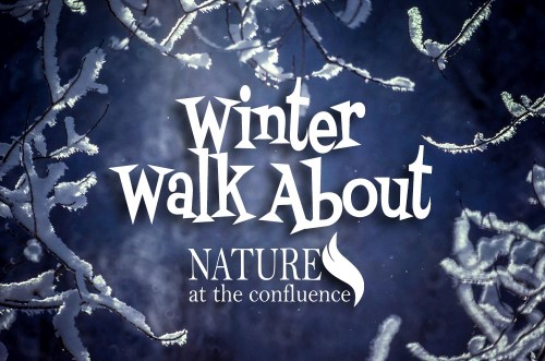 Winter Walk About | Beloit Winterfest Event @ Nature At The Confluence Campus