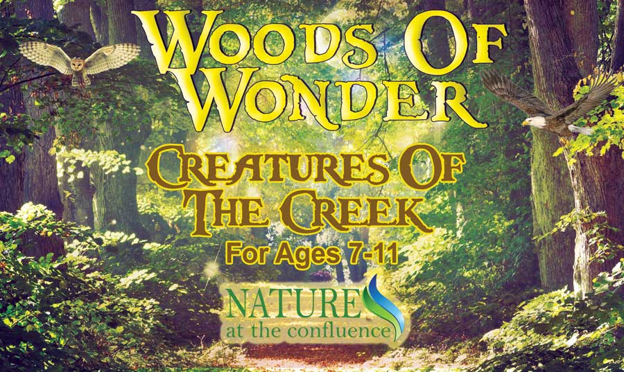 Creatures of The Creek | Woods of Wonder for Ages 7-11 @ Nature At The Confluence Campus