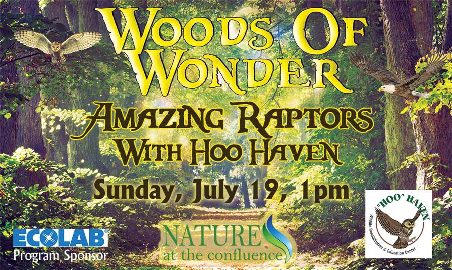 Amazing Raptors with Hoo Haven | Woods of Wonder Family Program @ Nature At The Confluence Campus | South Beloit | Illinois | United States