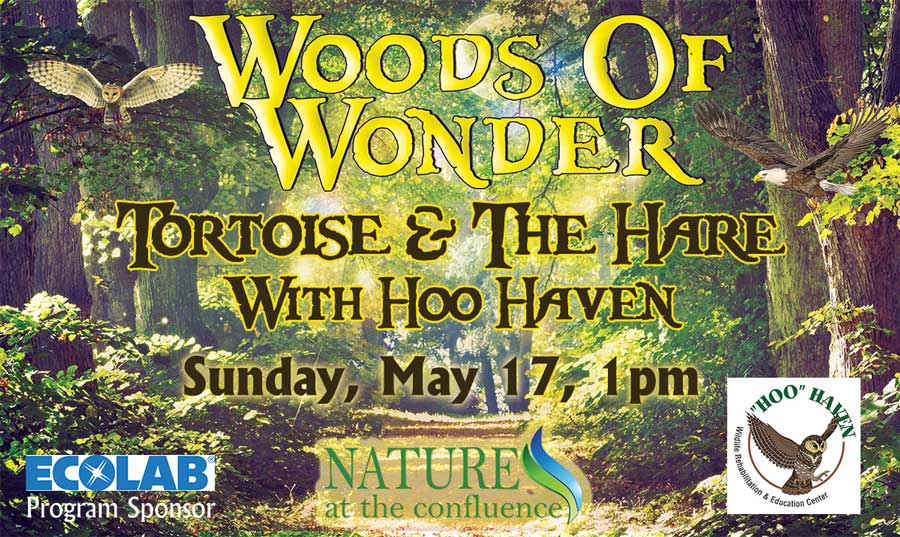 Tortoise And The Hare with Hoo Haven | Woods of Wonder Family Program @ Nature At The Confluence Campus | South Beloit | Illinois | United States