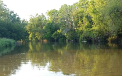 History Along The Banks of Turtle Creek