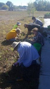 Rain Garden Planting @ Nature at the Confluence