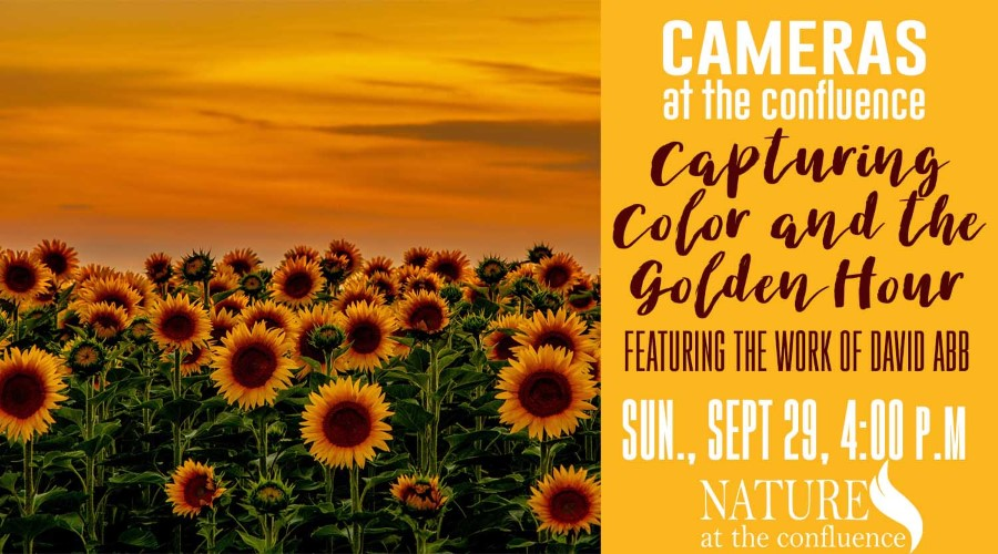 Cameras At The Confluence: Capturing Color and the Golden Hour @ Nature at the Confluence