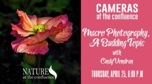 "Cameras At The Confluence: ""Macro Photography – A Budding Topic"" with Cindy Vondran @ Nature at the Confluence 