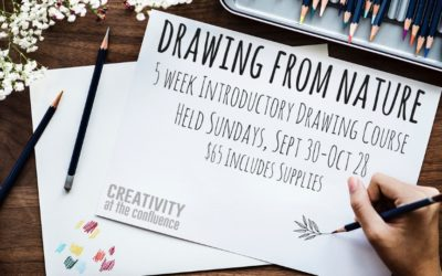 New 5-week nature-based drawing classes offered