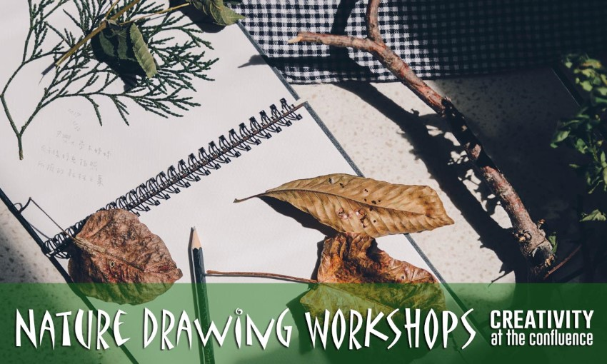 Nature Drawing Workshops for Ages 13-Adult @ Nature at the Confluence | South Beloit | Illinois | United States