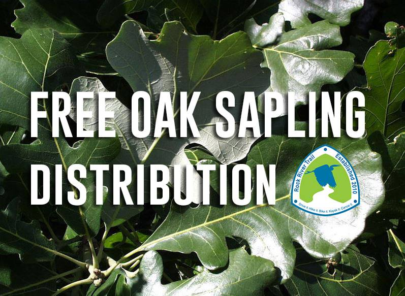 Free Oak Sapling Giveaway with Rock River Trail @ Nature at the Confluence