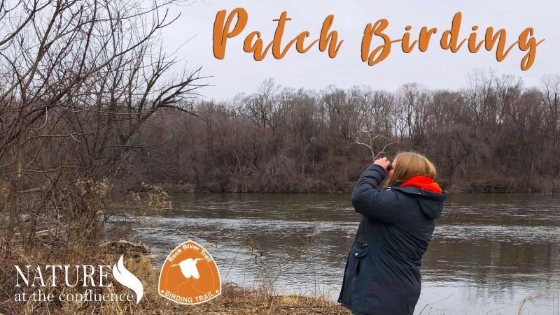 patch birding
