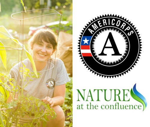 Summer AmeriCorps Internship Available