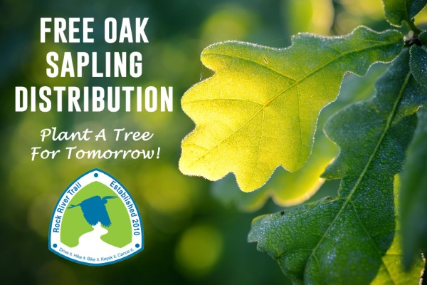 Free Oak Sapling Giveaway for Earth Day