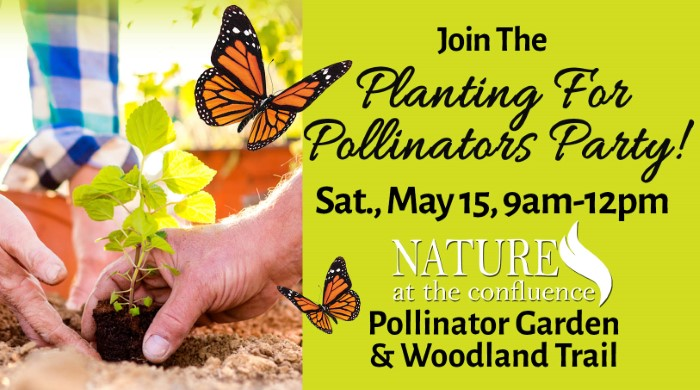 Planting For Pollinators Party – Join Us!