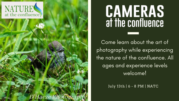 Cameras At The Confluence – Free!